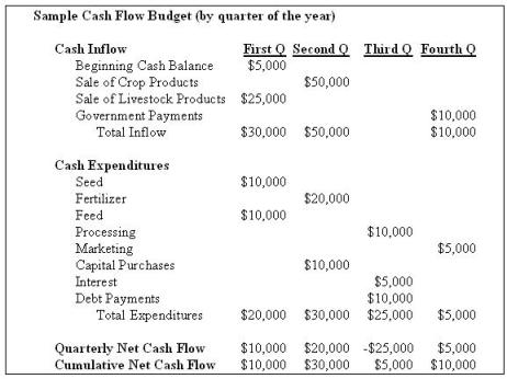 Sample Cash Flow Budget