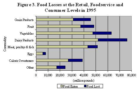 Food Lisses and retail foodservice and consumer levels in 1995