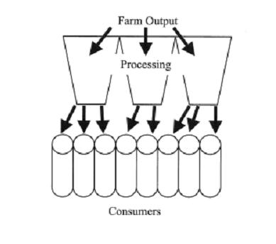 Traditional food marketing system diagram