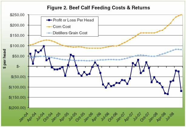 Beef calf feeding costs and returns