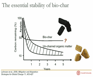 The essential stability of biochar