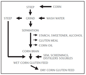 Overview of the corn wet milling process