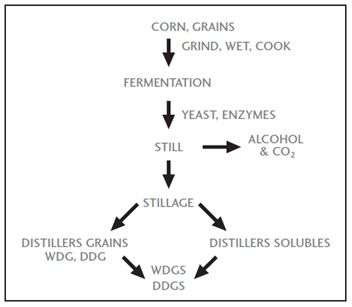 Overview of the corn dry milling process