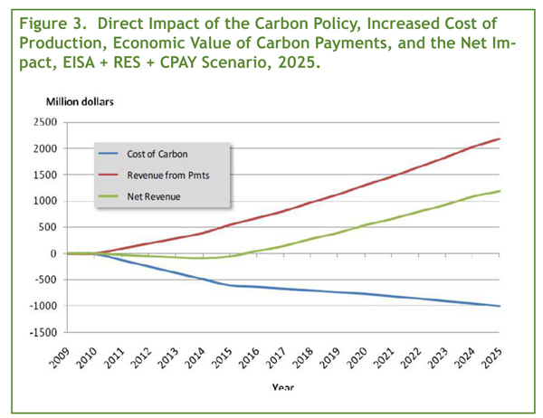 Direct Impact of the Carbon Policy