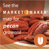 Pecan food searcher