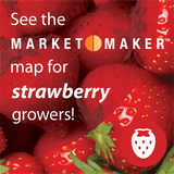 Strawberry FoodSearcher